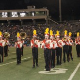 Watch our Straight Superiors!