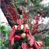 """Come See the Christmas Tree"""